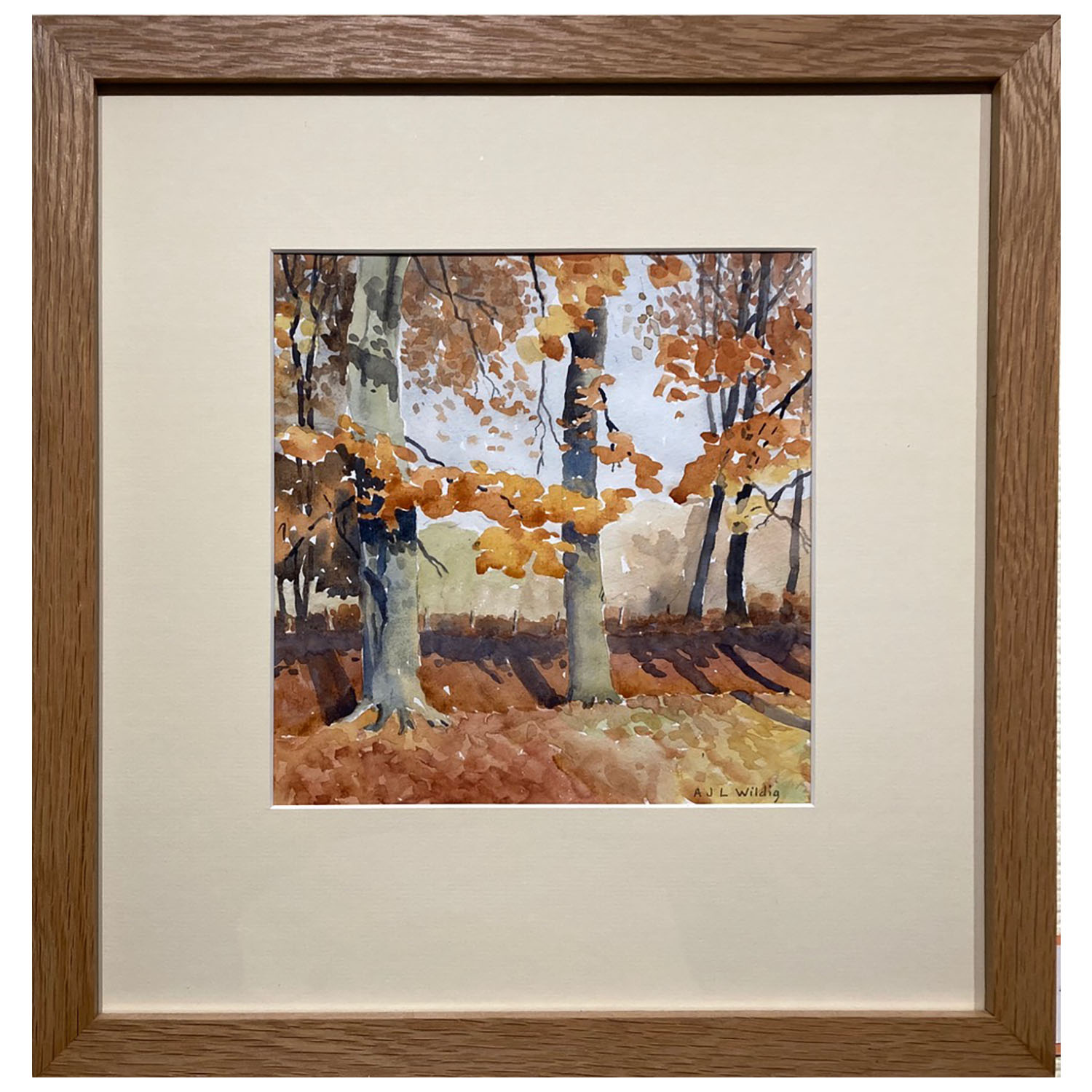 Anthony Wildig Autumn Beeches Watercolour 394x380mm £120 Framed