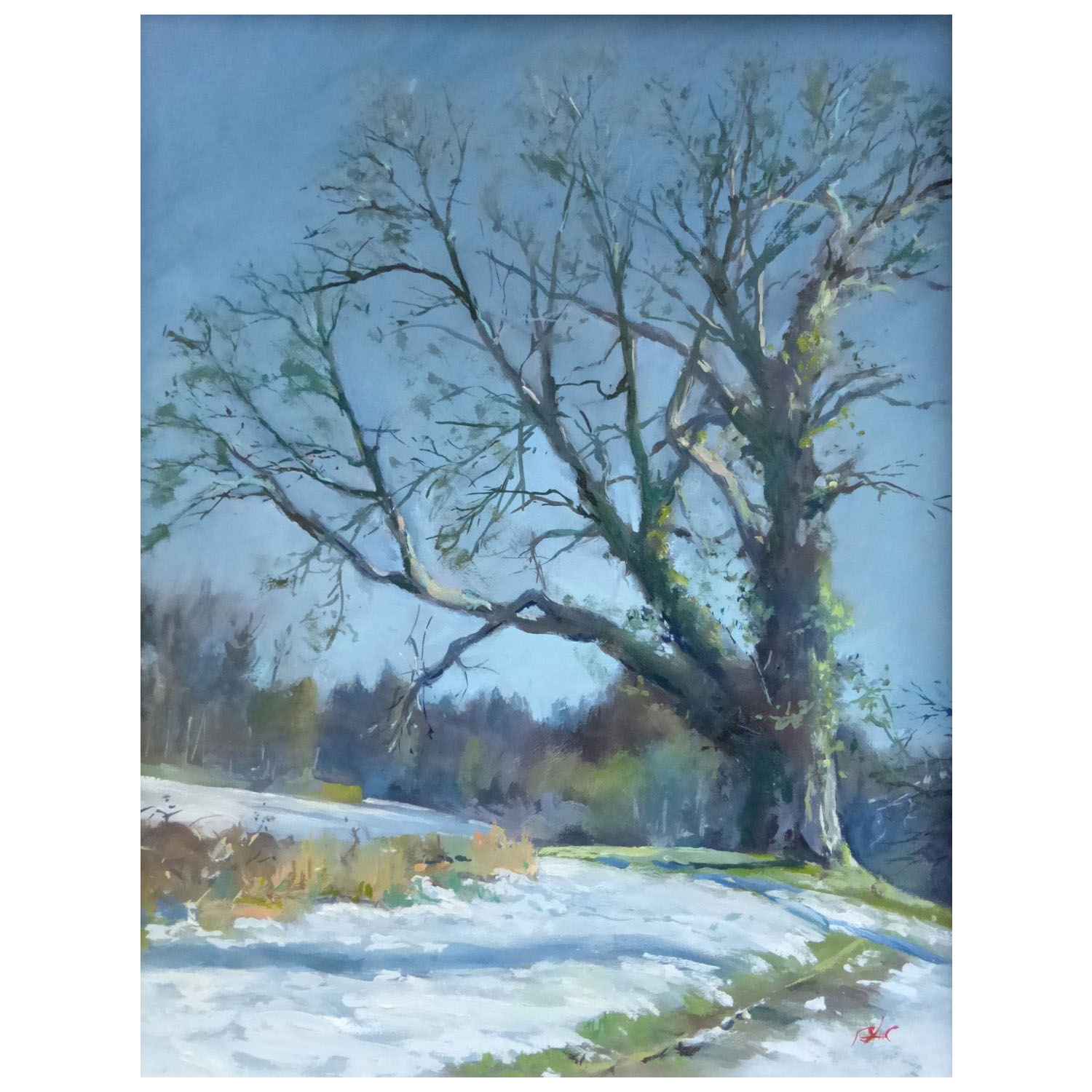 Brian A Collins ARSMA, Cotswolds Trees Oil, 350mmx450mm, £125